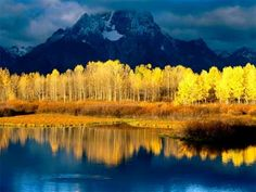 Photo of the Day - This is a beautiful image of Aspens by a mountain lake. Notice the fantastic reflections on the water.