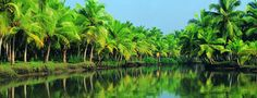 Kerala Tour For a Memorable Experience - http://www.mykeralatour.in/ - Kerala is one of the 10 most popular and perfect places of the world according to the National Geographical magazine. Kerala is the most famous tourism destination in India that has emerged as a tourism hub.