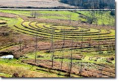 Mark Shepherd's 106 Acre Permaculture Farm in Viola, Wisconsin Permaculture Forums, Permaculture Courses, Permaculture Information & News
