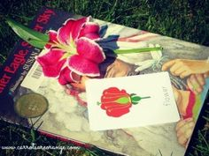 Love this Montessori Botany post! It full of great ideas! There are some new ones here!