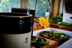 Crock-style Barrel fermented pickles