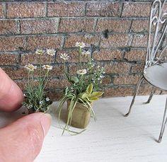 Daisies. Dollhouse & Miniature ROSY, Yukari Miyazaki