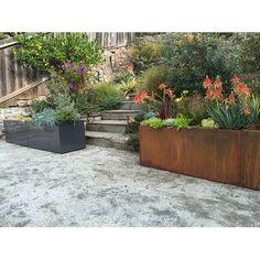 Nice Planter Aluminum Rectangular Planter & Reviews | Wayfair