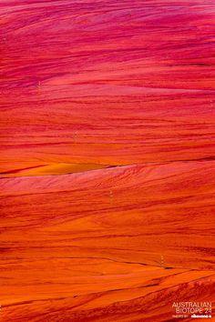 From the Australian Biotope extented collection. shot in Western Australia by nikosono — at Australia. #australianbiotope24 #australianbiotope #australiasgoldenoutback #thisiswa #mustseewa #SeeAustralia #worlderlust #westernaustralia #nature_perfection #ig_naturesbest #nothingisordinary #shotaward #vzco_of_our_world #australia #aerialphotography #aerial #fineart #ig_minimal_art #ig_minimalismo #madmax #nikosono #lig_cameras #landscapephotography #minimal #minimalism #minimalplanet #pink