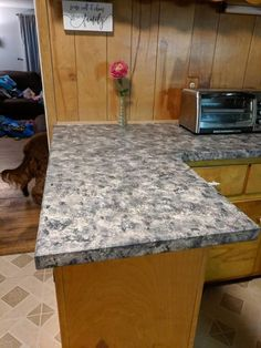 How to Paint Your Countertops Like Granite • Mama and More Painting Laminate Countertops, Refinish Countertops, Epoxy Countertop, Granite Countertops, Countertop Transformations, Countertop Makeover, Gold Stool, Sponge Painting, Painting Tips