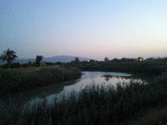 Río Segura,entre Rincón de Seca y Rincón de Beniscornia.Atardecer.
