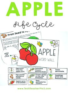 This pack contains a huge range of activities on the apple life cycle and is especially fun for exploring the senses *crunch*, *yum*! Suitable for K to Grade 2 this pack provides many differentiated activities to discuss how apples grow. #techteacherpto3 #apples #lifecycle #stem #pips #seeds #skin #science #kids #apple