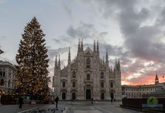 Christmas tree in Milan - The christmas tree placed in the Duomo square in Milan