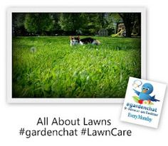#gardenchat Blog :  we are excited to share your lawn shares from Pinterest!
