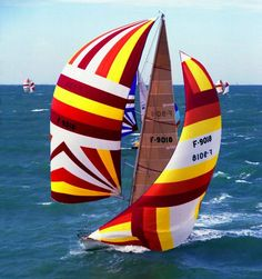 Look at these bright sails!