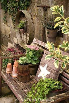 banco de madeira no jardim