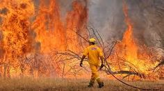 black saturday bush fires - Google Search