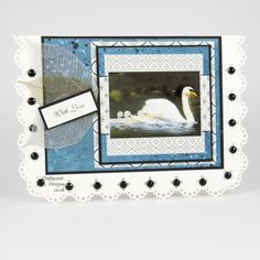 Handmade Card : This card has been made using the Pollyanna Pickering Wild Birds paper pad and popper pad.