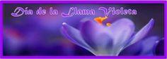 Såbado rayo violeta