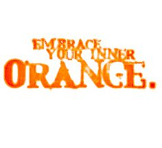 Google Image Result for http://static.tumblr.com/ctml3za/V9mlgb2kn/embrace-orange.jpg