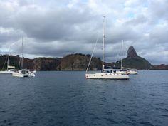 Pela manhã no porto de Noronha!