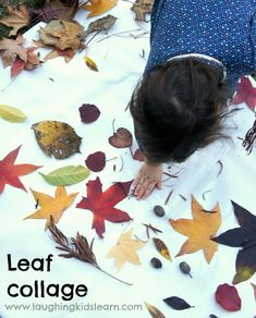 Leaf collage activity for kids which is great to do during autumn of fall season.