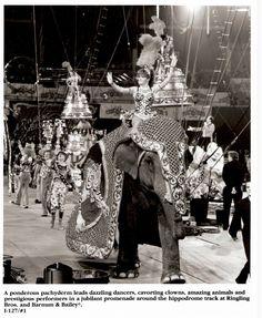 They say a picture is worth a thousand words. When it's a circus photo, it can sometimes be worth a thousand dollars . While most circus photos Circus Show, Circus Art, Circus Photography, Big Top, Vintage Circus, Sideshow, New Things To Learn, Elephant, Sky