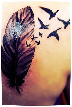 mallard curl feather tattoo - Google Search