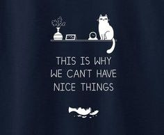 Cat Kitty Kitten This is why we can't have nice things funny cute tee t-shirt