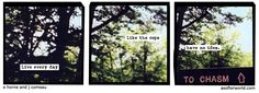 """A Softer World 1162: """"Live every day like the cops have no idea."""" (They probably don't!)"""