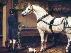 Untitled - Grey Horse in Barn - Artist Andrzej Novak-Zemplinski
