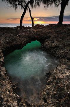 Changuu - Zanzibar, Tanzania, Africa.