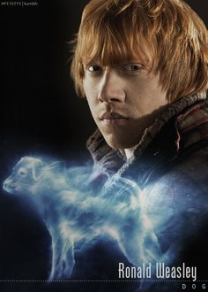 Ron's Patronus is a terrier that specializes in catching otters (hermione's patronus)