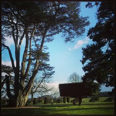 Enjoying glorious countryside and a historic country estate Photo by magdainlondon