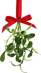 mistletoe and bells