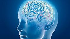 What is happening to the neurochemistry of an addict's brain  that makes that person so unable to do without cocaine, heroin, or  methamphetamines?