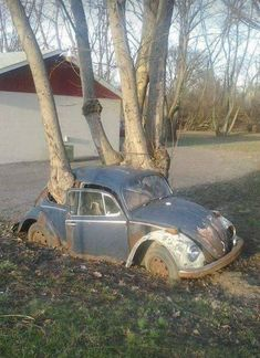 """VW """"Not going anywhere"""""""