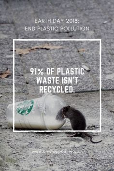 Earth Day 2018 scary plastic statistic: 91% of plastic waste isn't recycled. And since most plastics don't biodegrade in any meaningful sense, all that plastic waste could exist for hundreds or even thousands of years.