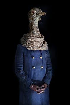 Animales vestidos con ropa que se ajusta a ellos como una segunda piel.