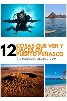 12 cosas y lugares para visitar en Puerto Peñasco | Las mejores 12 cosas por hacer en Puerto Peñasco | En Puerto Peñasco Sonora México no solo podrás disfrutar de las hermosas playas, sino también puedes bucear, ver ballenas, aves, y hasta jugar golf a la orilla del mar de Cortés. ¡Te va a encantar! #visitamexico #visitmexico #sonora #puertopeñasco #playas #desierto #buceo #ballenas #golf #méxico #mexicotravel #viajes #viajesbaratos #ciudadesenmexico Puerto Penasco Mexico, Puerto Peñasco, Places To Travel, Places To Go, Fauna Marina, Snorkel, Mexico Travel, Summer Travel, Weekend Getaways