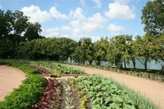 The Regenstein Fruit and Vegetable Garden offers year-round demonstrations, programs, exhibits and tastings. It includes a kitchen amphithea...