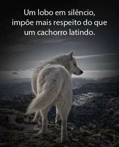 Genius Quotes, Anime Wolf, Beauty Quotes, Best Memes, Inspirational Quotes, Wisdom, Thoughts, Humor, Feelings