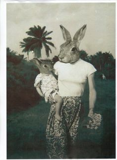 Lucky Rabbit http://www.pinterest.com/pin/553942822889545288/