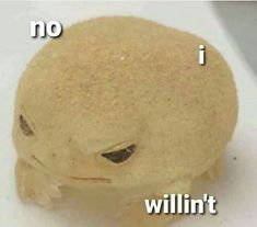 Cute Memes, Dankest Memes, Stupid Funny Memes, Haha Funny, Frog Pictures, Response Memes, Cute Frogs, Frog And Toad, Frog Frog