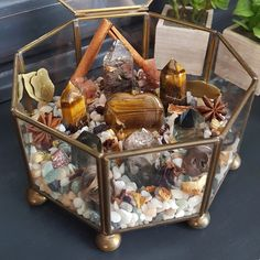 May I present: The Kitchen Witch Crystal Garden. This garden is meant to encourage the creatrix within. Infuse this garden with your energy and tell it what you wish to create www.thecrystaljypsy.com #crystal #crystals #crystalterrarium #crystalgarden