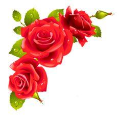růže, gif