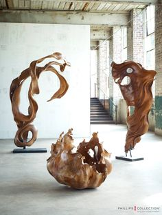 Phillips collection root sculptures