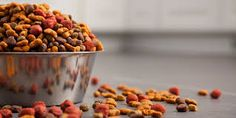 What is in Pet Food?