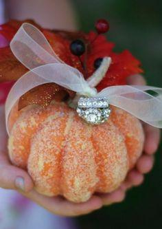 Pumpkin ring carrier~ The ring bearer can carry a pumpkin ring carrier instead of a pillow. October Wedding, Fall Wedding, Our Wedding, Wedding Stuff, Dream Wedding, Wedding Bells, Rustic Wedding, Autumn Weddings, Glitter Wedding