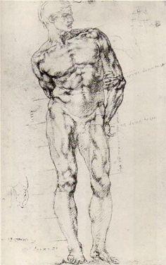 Michelangelo Buonarroti (1475-1564) Study