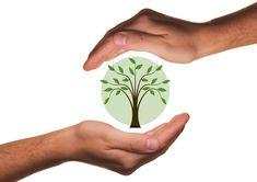 Aradura Grundhaltung Philosophie Jungpflanzen Bio Biologisch Pflanzen Vielfalt Einstellung