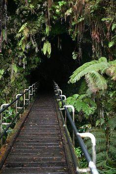 Thurston Lava Tube, Volcanoes National Park