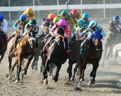 Horse Racing - Louisiana Downs, Shreveport, Louisiana