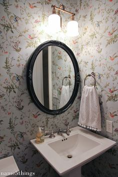 A Thoughtful Place: Friday Eye Candy: Wallpaper Toilet, Eyes Wallpaper, Bathroom Wallpaper, Powder Room Wallpaper, Cole And Son Wallpaper, Eye Makeup Red Dress, Hummingbird Wallpaper, Eye Shadow Application, A Thoughtful Place