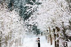 Alice in Winter Wonderland Wedding: Sabrina + Hubert